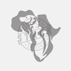 STARR_RhodesianRidgebackInAfrica