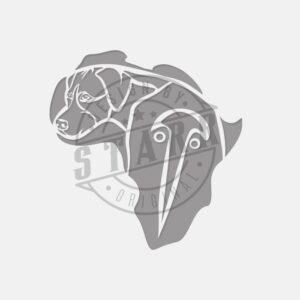 STARR_RhodesianRidgebackandAfrica